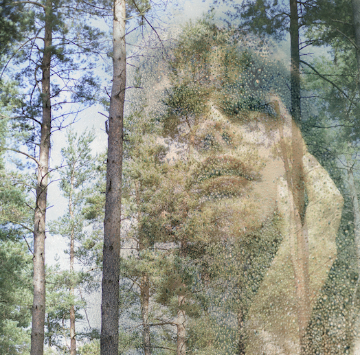 Woman Seen in the Trees